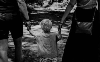 What You Need to Look For in an Adoption Attorney